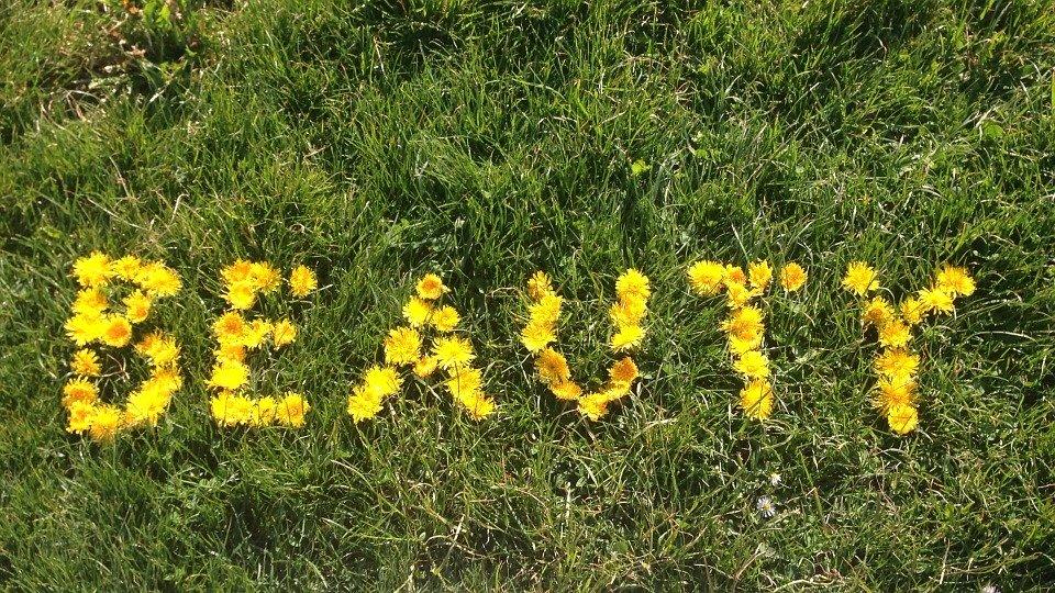 nápis z květů
